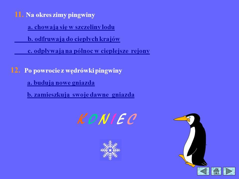 6. Celem obrączkowania pingwinów było a. policzenie wszystkich ptaków b. obserwacja wędrówek ptaków 7. Tajemniczy sposób ucieczki pingwinów z zagrody