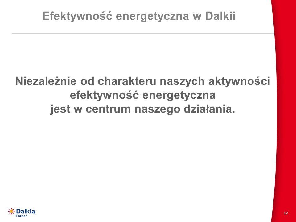 12 Efektywność energetyczna w Dalkii Niezależnie od charakteru naszych aktywności efektywność energetyczna jest w centrum naszego działania.