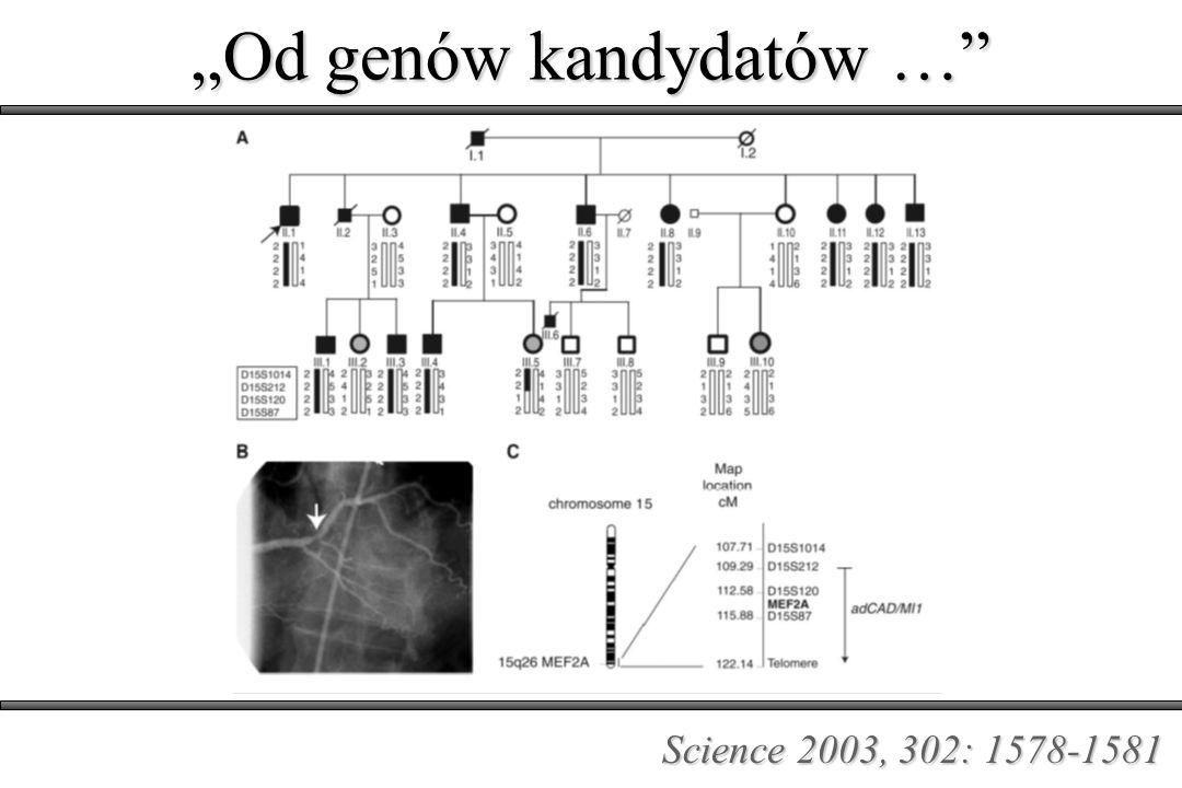 Nauka o roli czynników genetycznych w odpowiedzi na lek w odpowiedzi na lek FARMAKOGENETYKA F.Vogel.