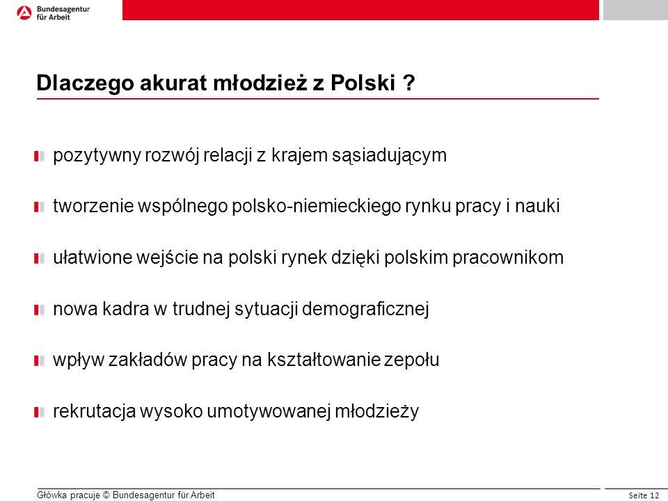 Seite 12 Główka pracuje © Bundesagentur für Arbeit Dlaczego akurat młodzież z Polski ? pozytywny rozwój relacji z krajem sąsiadującym tworzenie wspóln
