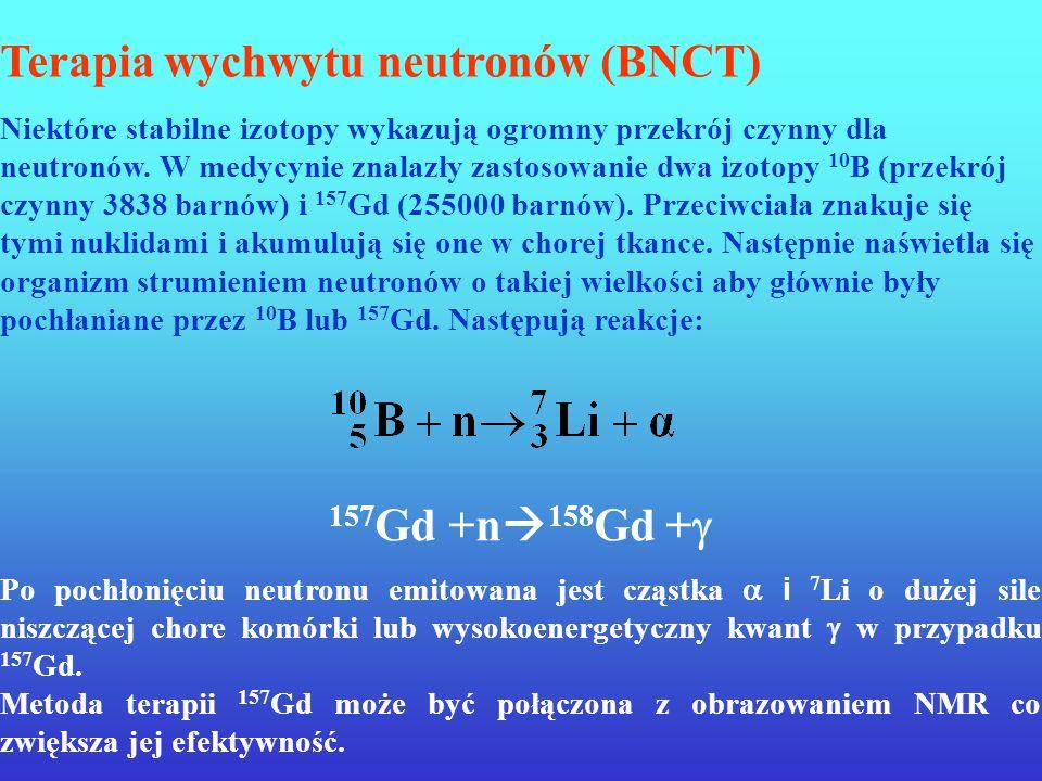 Terapia borowo-neutronowa (Boron Neutron Capture Therapy, BNCT)