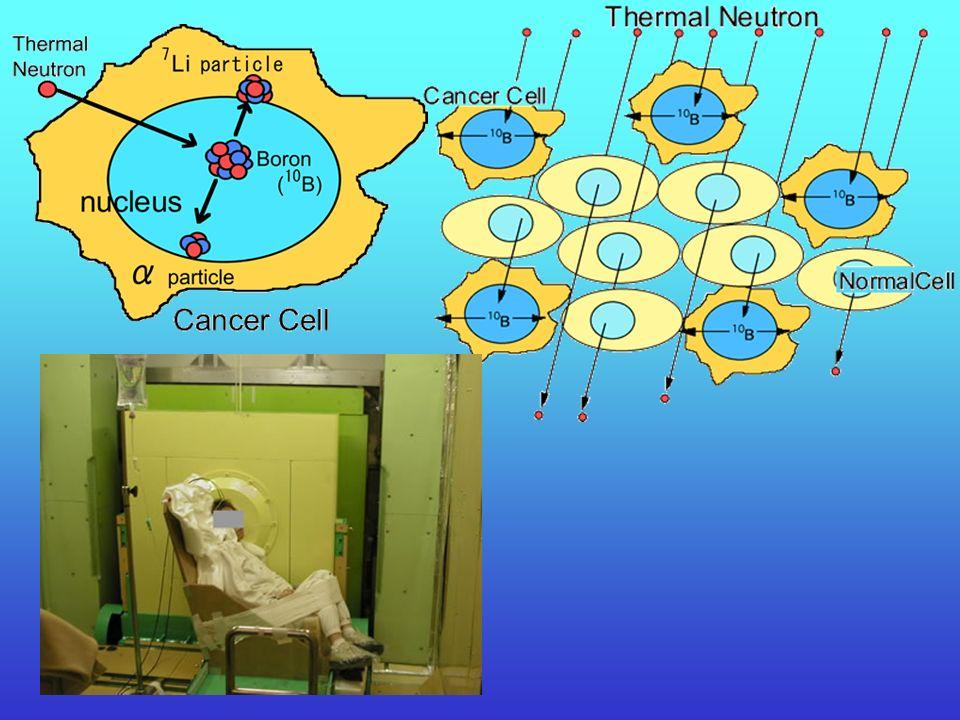 Terapia wychwytu neutronów (BNCT) Niektóre stabilne izotopy wykazują ogromny przekrój czynny dla neutronów. W medycynie znalazły zastosowanie dwa izot