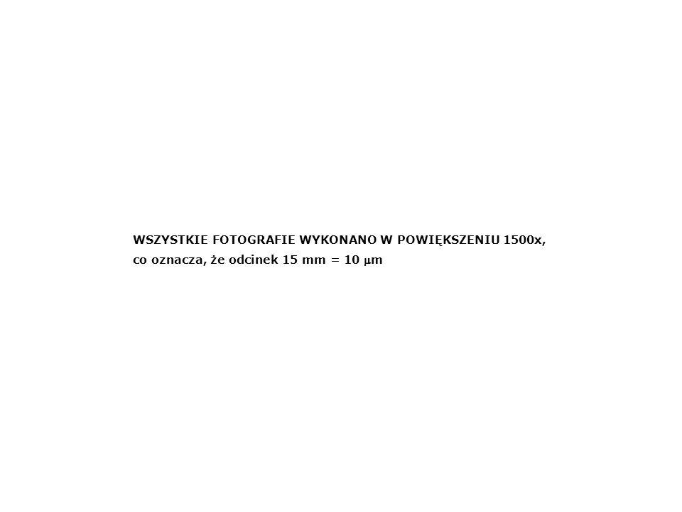 PENNALES - Fragilariaceae 2 9 3 5 4 7 6 1 8 10 14 15 12 13 35 34 11 1.