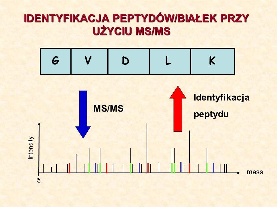 GVDLK mass 0 Intensity mass 0 MS/MS Identyfikacja peptydu IDENTYFIKACJA PEPTYDÓW/BIAŁEK PRZY UŻYCIU MS/MS UŻYCIU MS/MS