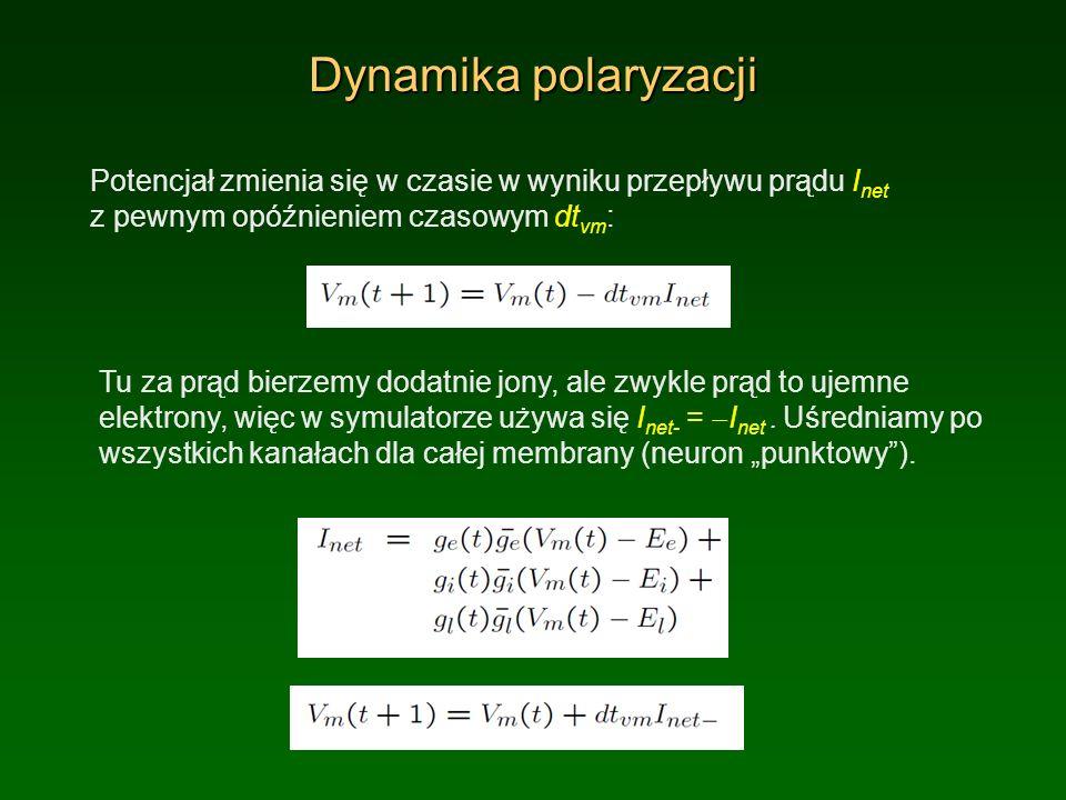 Dynamika polaryzacji Potencjał zmienia się w czasie w wyniku przepływu prądu I net z pewnym opóźnieniem czasowym dt vm : Tu za prąd bierzemy dodatnie