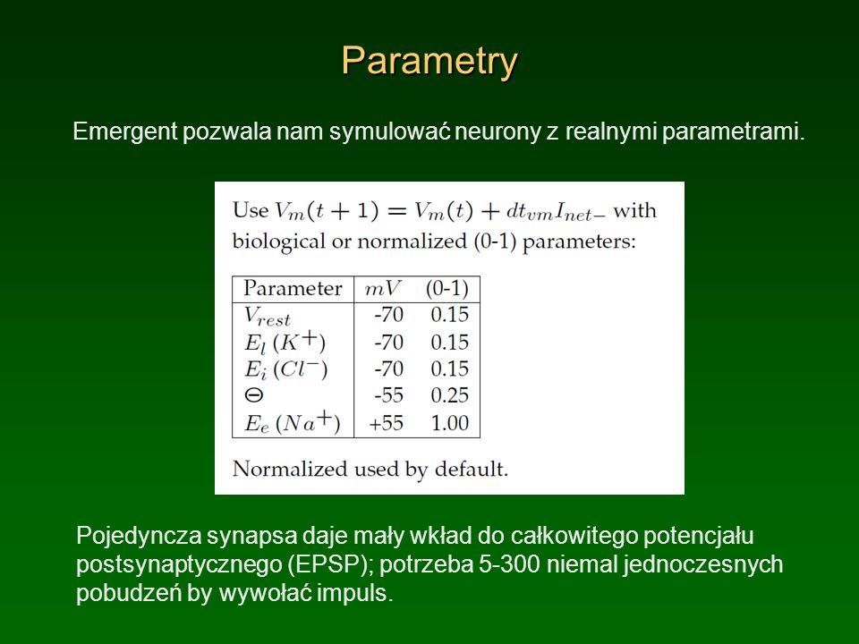 Parametry Emergent pozwala nam symulować neurony z realnymi parametrami. Pojedyncza synapsa daje mały wkład do całkowitego potencjału postsynaptyczneg