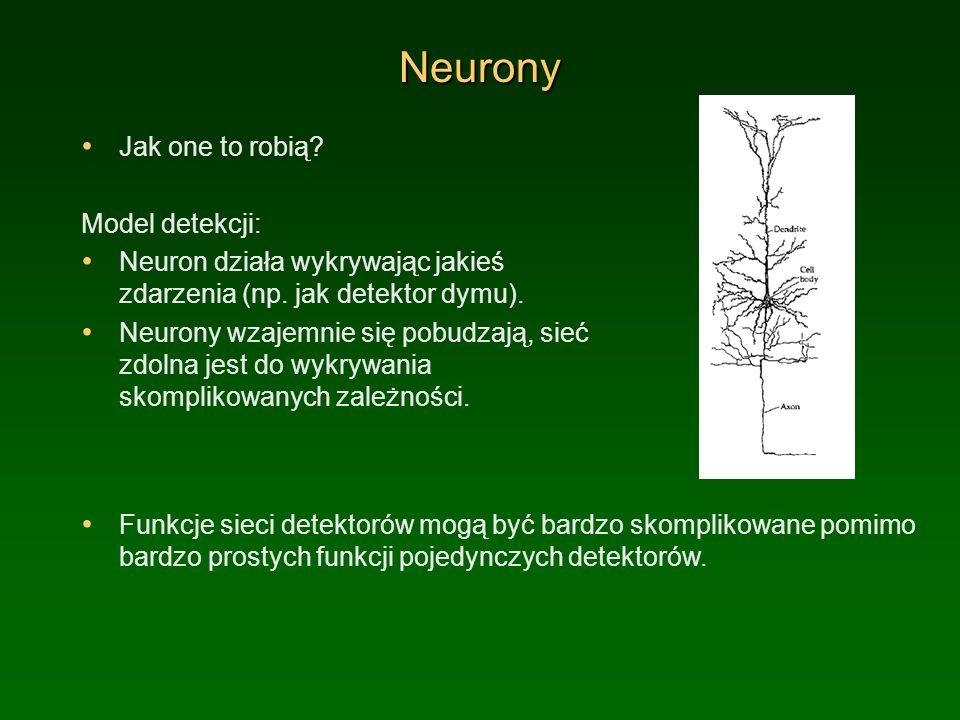 Neurony Jak one to robią? Model detekcji: Neuron działa wykrywając jakieś zdarzenia (np. jak detektor dymu). Neurony wzajemnie się pobudzają, sieć zdo