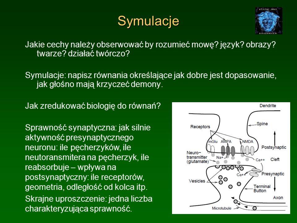 Abstrakcyjny neuron Sumuj wszystkie pobudzenia uwzględniając sprawności synaptyczne.