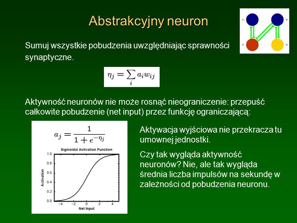 Biofizyczny neuron Jony przepływają przez membrany neuronów zmieniając ich polaryzację V m pod wpływem napięcia elektrycznego i procesów dyfuzji.