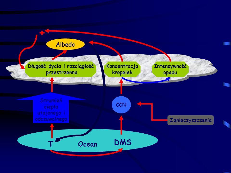 Albedo CCN Zanieczyszczenia Strumień ciepła utajonego i odczuwalnego Ocean Długość życia i rozciągłość przestrzenna Koncentracja kropelek Intensywność