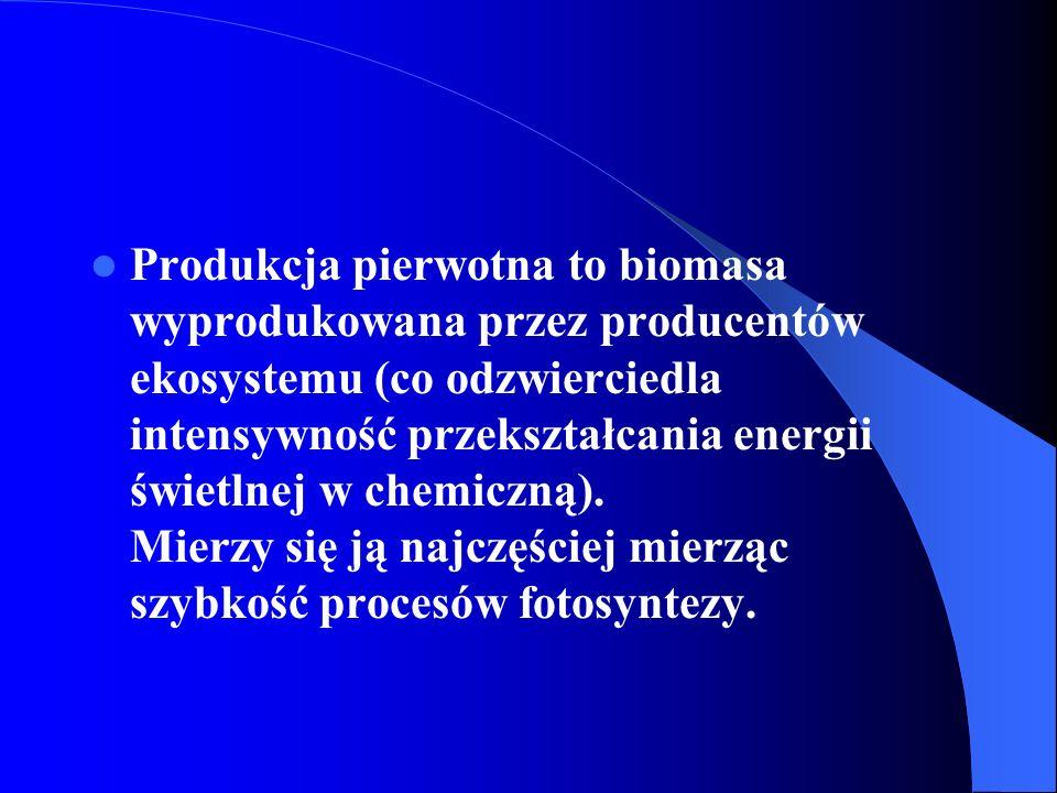 Produkcję pierwotną możemy podzielić na: produkcję pierwotną brutto - koszty utrzymania danego układu plus przyrost biomasy autotrofów.