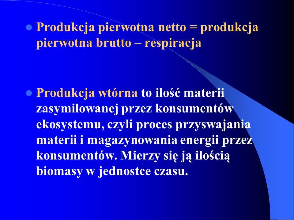 Produkcję wtórną możemy podzielić na: produkcję wtórną brutto - koszty utrzymania danego układu plus przyrost biomasy heterotrofów; produkcję wtórną netto - przyrost biomasy heterotrofów.