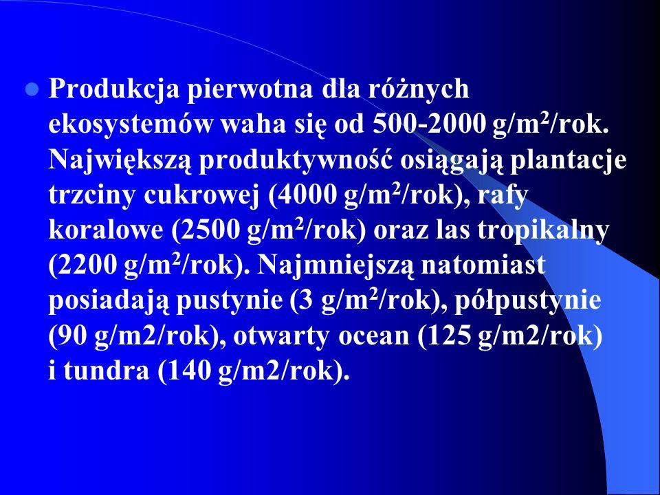 Wysoka wartość produkcji pierwotnej netto nie musi oznaczać wielkiej biomasy producentów, jak też wielka biomasa producentów nie musi wcale oznaczać wysokiej produkcji - ponieważ wielkość biomasy producentów zależy nie tylko od tego jak szybko jest ona produkowana, ale też od tego w jakim tempie jest eksploatowana.