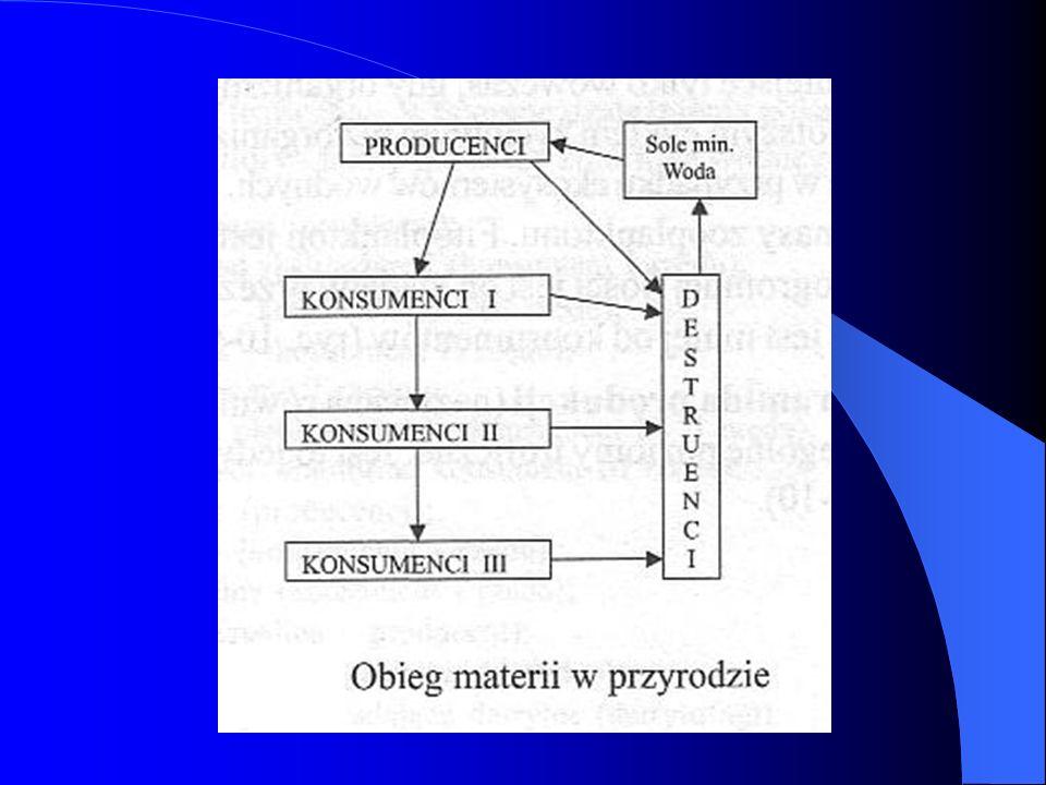 Ekosystemy możemy podzielić na dwa rodzaje: ekosystem autotroficzny to taki, którego podstawą funkcjonowania jest światło i materia organiczna wytwarzana przez producentów w procesie fotosyntezy (autochtoniczna).