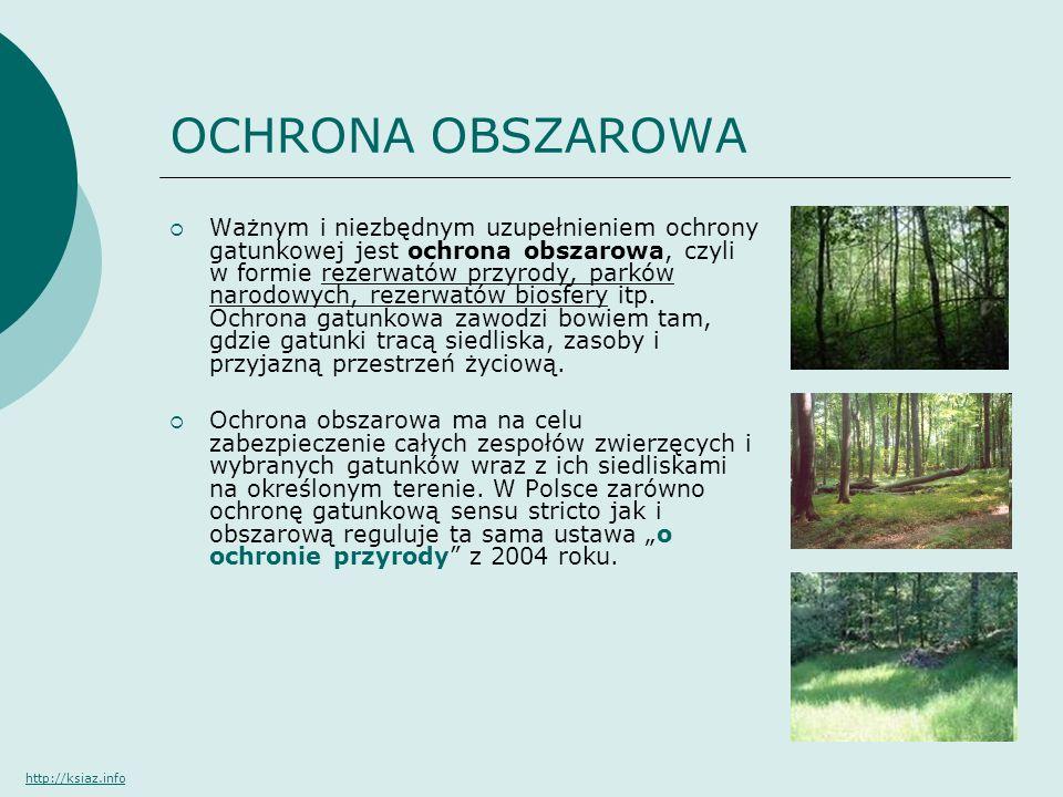 OCHRONA OBSZAROWA Ważnym i niezbędnym uzupełnieniem ochrony gatunkowej jest ochrona obszarowa, czyli w formie rezerwatów przyrody, parków narodowych,