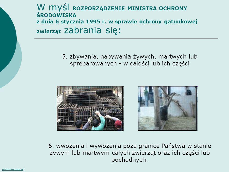 W myśl ROZPORZĄDZENIE MINISTRA OCHRONY ŚRODOWISKA z dnia 6 stycznia 1995 r. w sprawie ochrony gatunkowej zwierząt zabrania się: 5. zbywania, nabywania