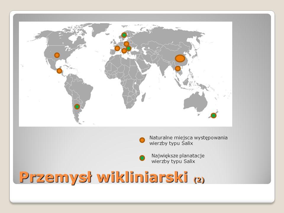 Przemysł wikliniarski (2) Naturalne miejsca występowania wierzby typu Salix Największe planatacje wierzby typu Salix