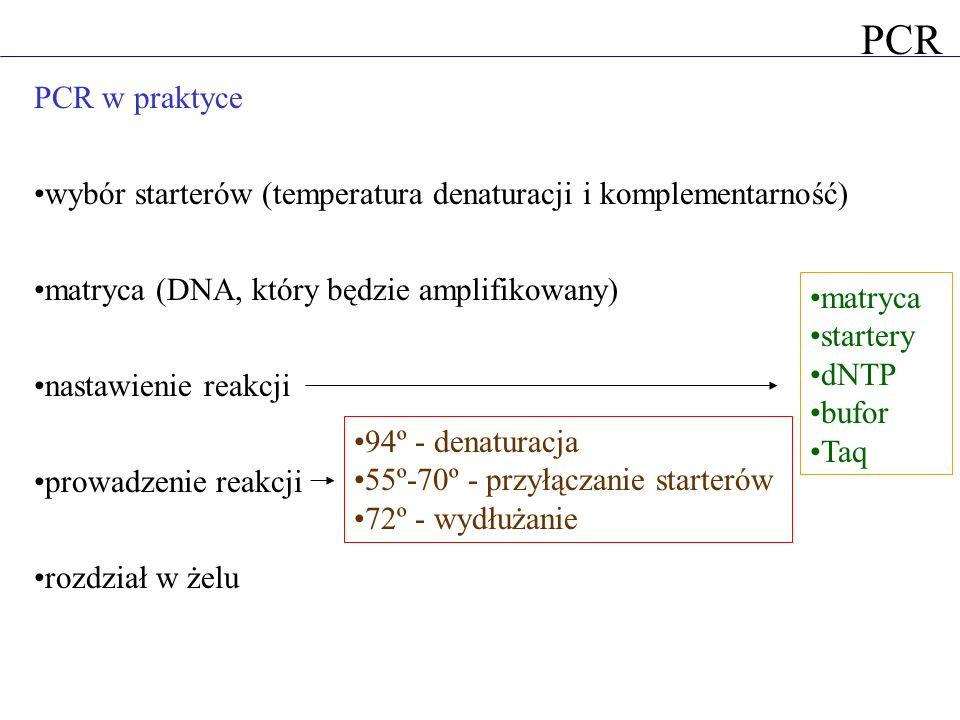 PCR w praktyce wybór starterów (temperatura denaturacji i komplementarność) matryca (DNA, który będzie amplifikowany) nastawienie reakcji prowadzenie