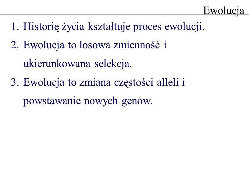 1.Historię życia kształtuje proces ewolucji. 2.Ewolucja to losowa zmienność i ukierunkowana selekcja. 3.Ewolucja to zmiana częstości alleli i powstawa