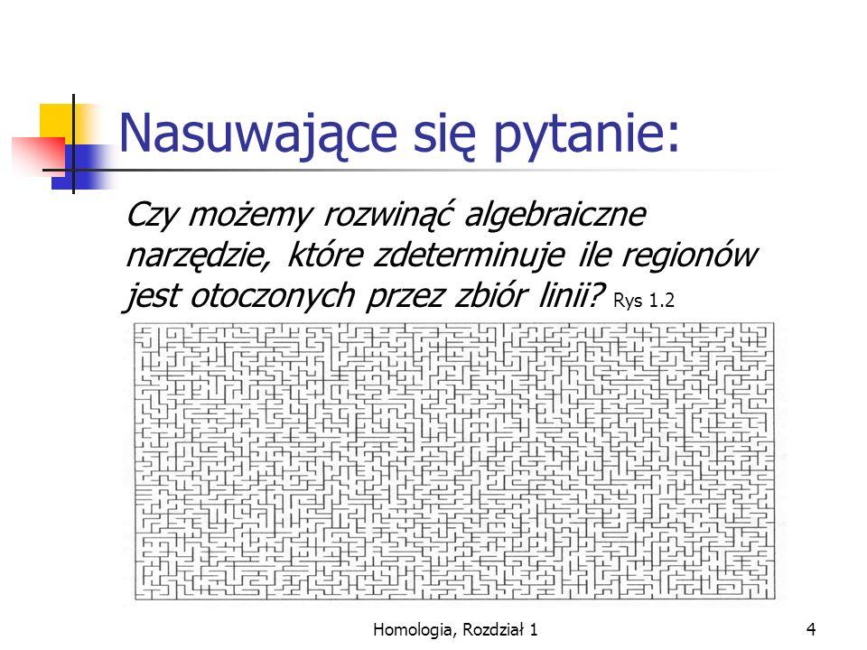 Homologia, Rozdział 115 Gdy kierunek krawędzi jest zgodny z kierunkiem osi to: [a,b] to algebraiczne [a,b] Gdy kierunek krawędzi jest przeciwny do kierunku osi to: [c,d] to algebraiczne –[c,d] Wtedy mając krawędź biegnącą z {a} do {b}: [a,b]:= b – a Gdzie jest liniowe.