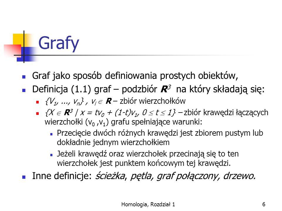Homologia, Rozdział 17 Graf kombinatoryczny.