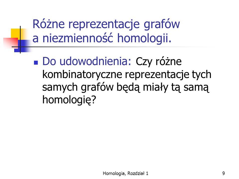 Homologia, Rozdział 110 Ograniczenia topologiczne i algebraiczne. Rys1.4