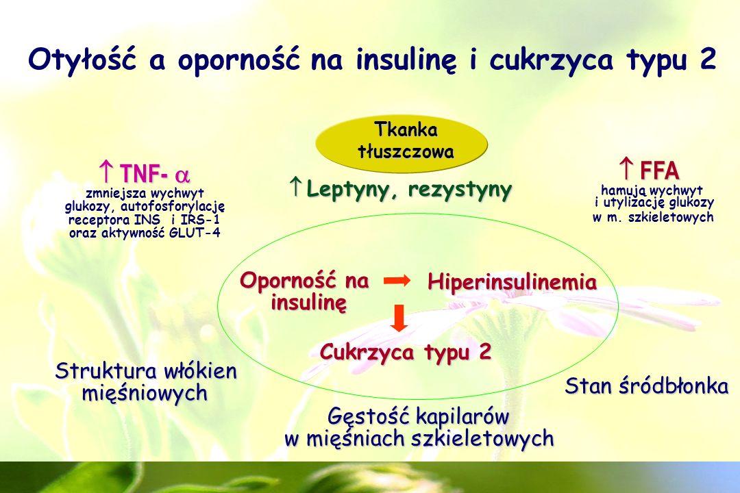 Aż 80-90% pacjentów z cukrzycą typu 2 to ludzie otyli ( masy ciała o 5 – 10% prowadzi do obniżenia poziomu cukru we krwi i pozwala na obniżenie dawki leków doustnych i insuliny ) Cukrzyca typu 2