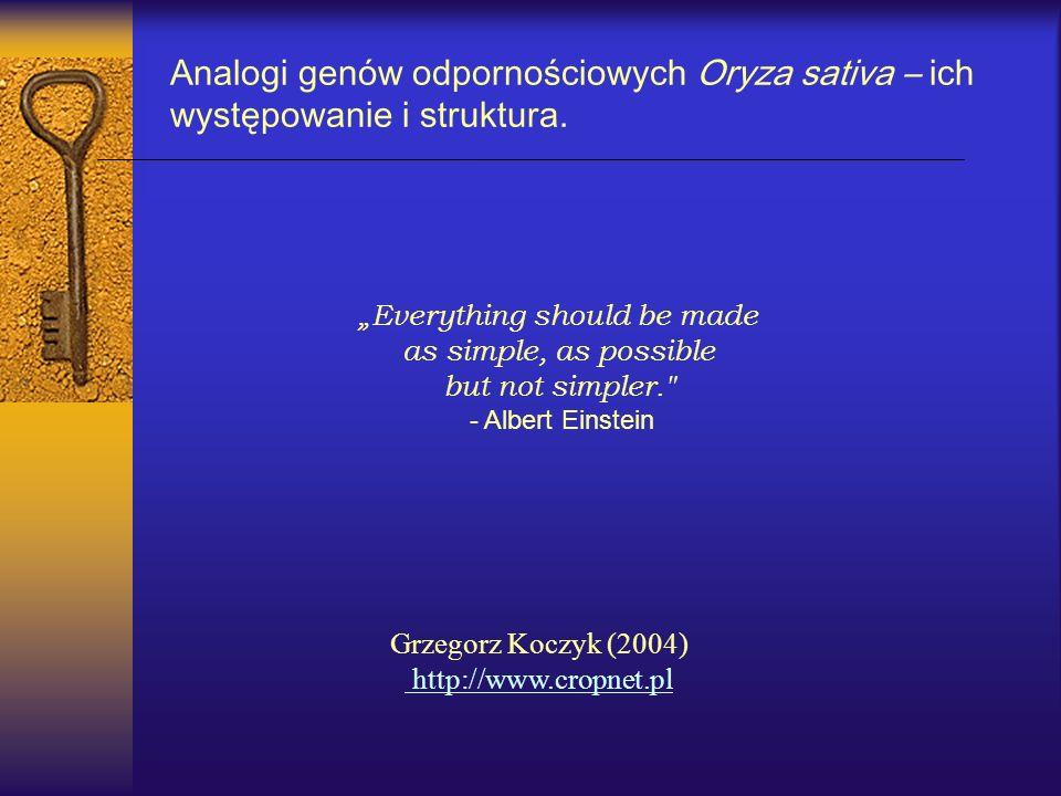 Grzegorz Koczyk (2004) http://www.cropnet.pl Analogi genów odpornościowych Oryza sativa – ich występowanie i struktura. Everything should be made as s