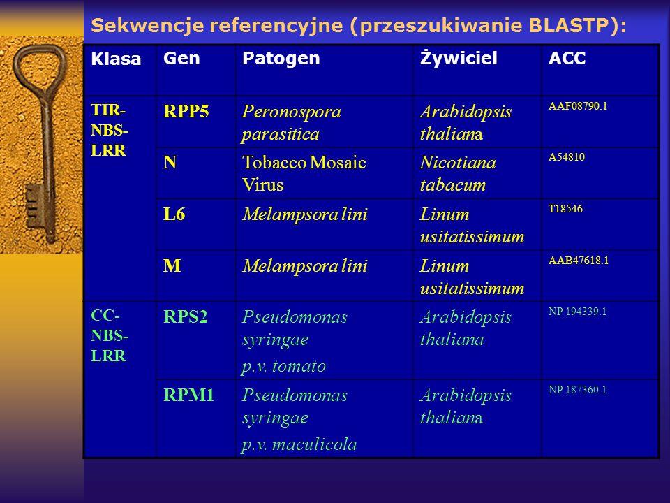 Sekwencje referencyjne (przeszukiwanie BLASTP): KlasaGenPatogenŻywicielACC TIR- NBS- LRR RPP5Peronospora parasitica Arabidopsis thaliana AAF08790.1 NT