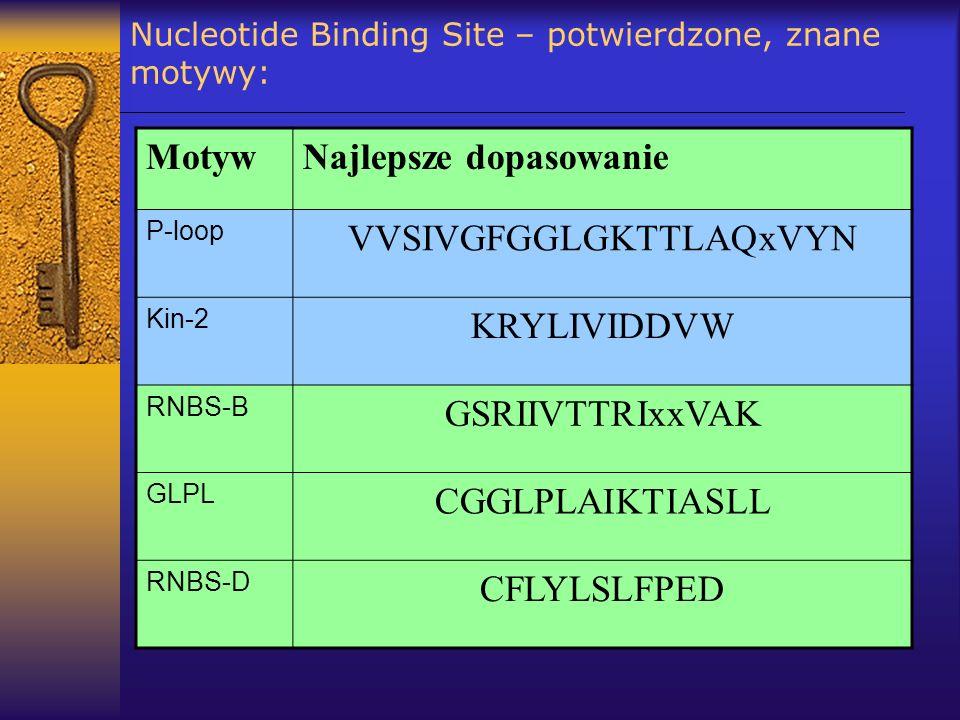 Nucleotide Binding Site – potwierdzone, znane motywy: MotywNajlepsze dopasowanie P-loop VVSIVGFGGLGKTTLAQxVYN Kin-2 KRYLIVIDDVW RNBS-B GSRIIVTTRIxxVAK