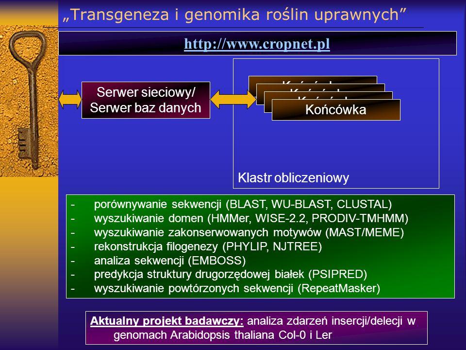 Transgeneza i genomika roślin uprawnych http://www.cropnet.pl -porównywanie sekwencji (BLAST, WU-BLAST, CLUSTAL) -wyszukiwanie domen (HMMer, WISE-2.2,