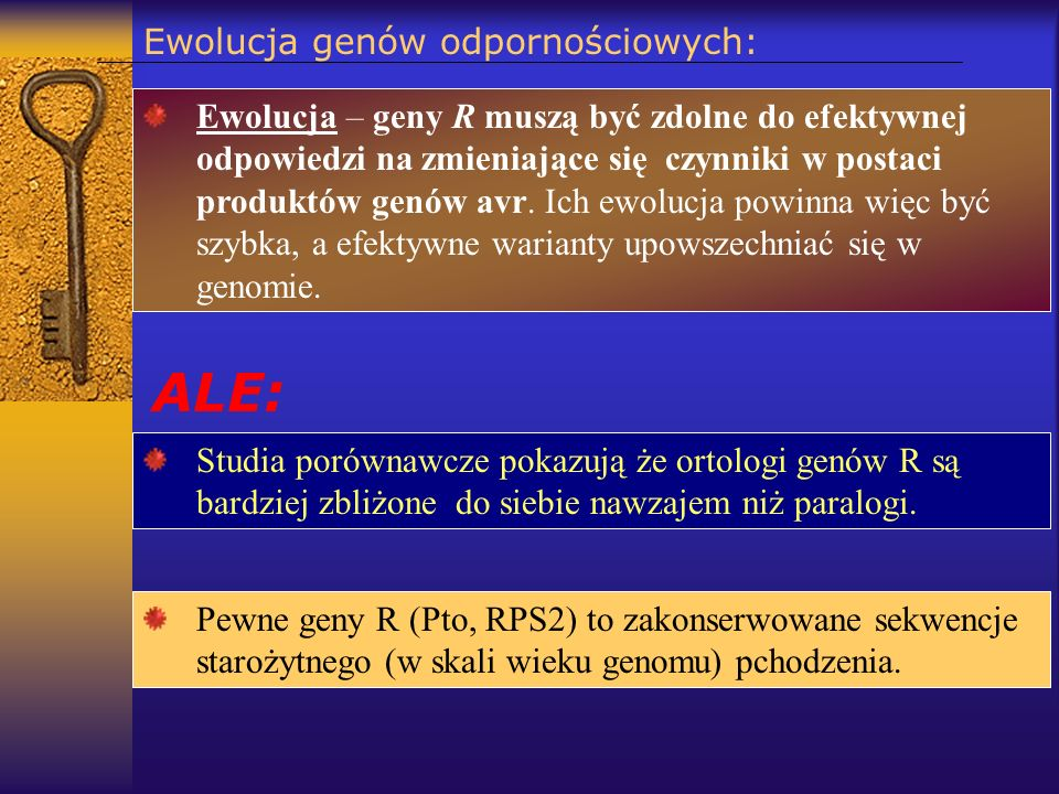 Ewolucja genów odpornościowych: Ewolucja – geny R muszą być zdolne do efektywnej odpowiedzi na zmieniające się czynniki w postaci produktów genów avr.