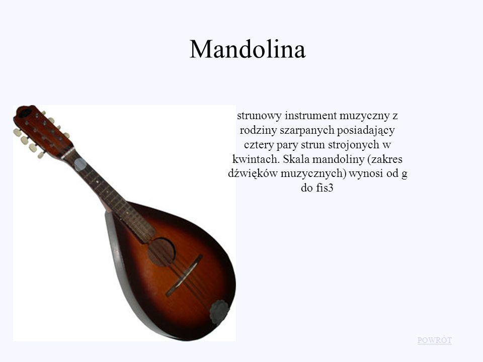 POWRÓT Mandolina strunowy instrument muzyczny z rodziny szarpanych posiadający cztery pary strun strojonych w kwintach. Skala mandoliny (zakres dźwięk