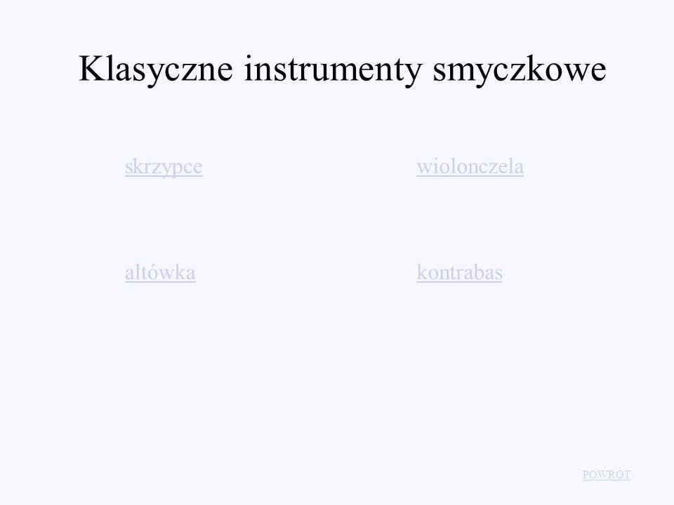 Klasyczne instrumenty smyczkowe POWRÓT skrzypce altówka wiolonczela kontrabas