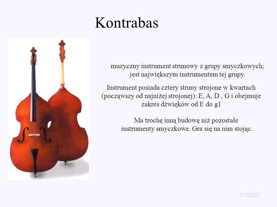 POWRÓT Kontrabas muzyczny instrument strunowy z grupy smyczkowych; jest największym instrumentem tej grupy. Instrument posiada cztery struny strojone