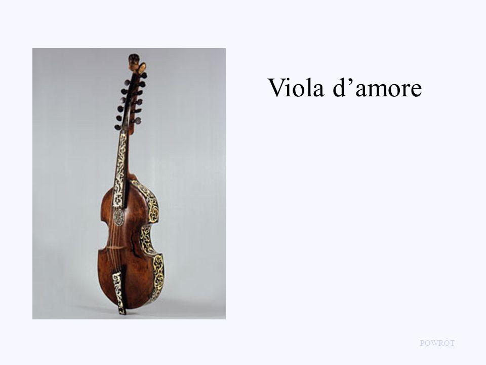 Viola damore POWRÓT