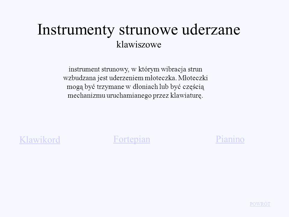 Instrumenty strunowe uderzane klawiszowe instrument strunowy, w którym wibracja strun wzbudzana jest uderzeniem młoteczka. Młoteczki mogą być trzymane