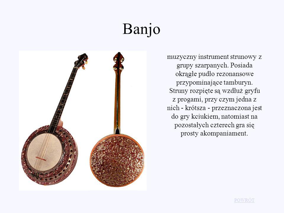 Banjo muzyczny instrument strunowy z grupy szarpanych. Posiada okrągłe pudło rezonansowe przypominające tamburyn. Struny rozpięte są wzdłuż gryfu z pr