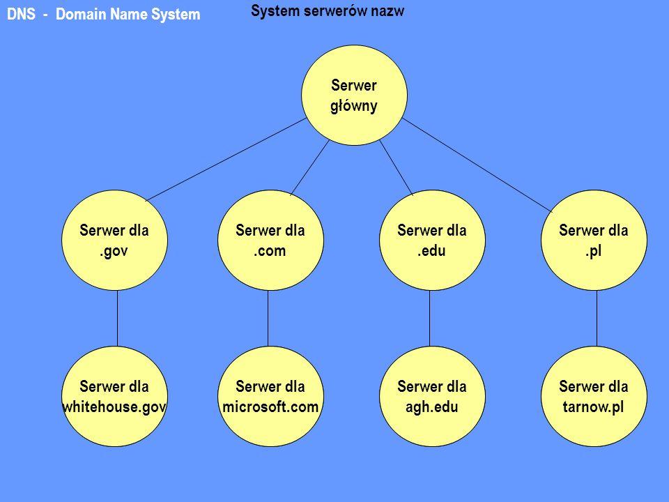 DNS - Domain Name System Serwer główny Serwer dla.gov System serwerów nazw Serwer dla.com Serwer dla.edu Serwer dla.pl Serwer dla tarnow.pl Serwer dla