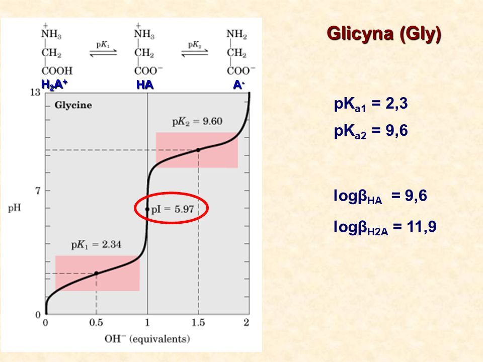 Glicyna (Gly) pK a1 = 2,3 pK a2 = 9,6 H2A+H2A+H2A+H2A+ HA A-A-A-A- logβ HA = 9,6 logβ H2A = 11,9