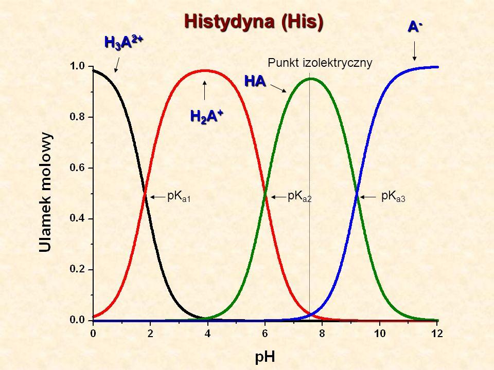 Histydyna (His) H 3 A 2+ H2A+H2A+H2A+H2A+ A-A-A-A- HA pK a1 pK a2 pK a3 Punkt izolektryczny