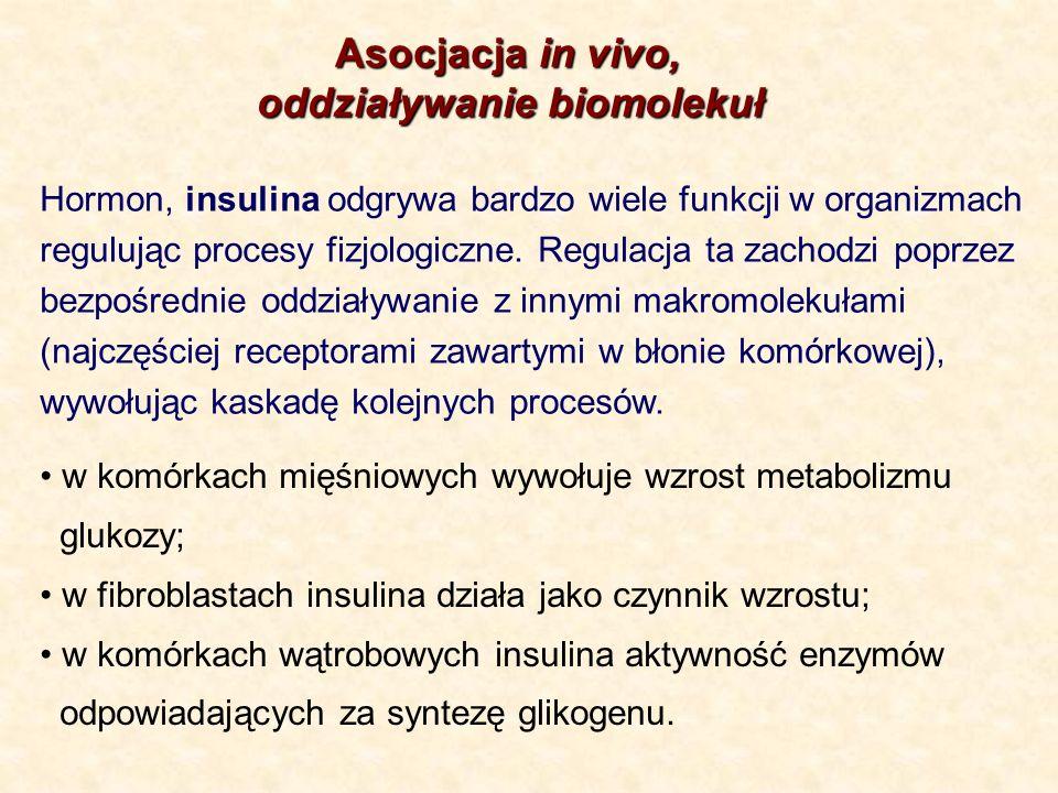 Asocjacja in vivo, Asocjacja in vivo, oddziaływanie biomolekuł Hormon, insulina odgrywa bardzo wiele funkcji w organizmach regulując procesy fizjologi