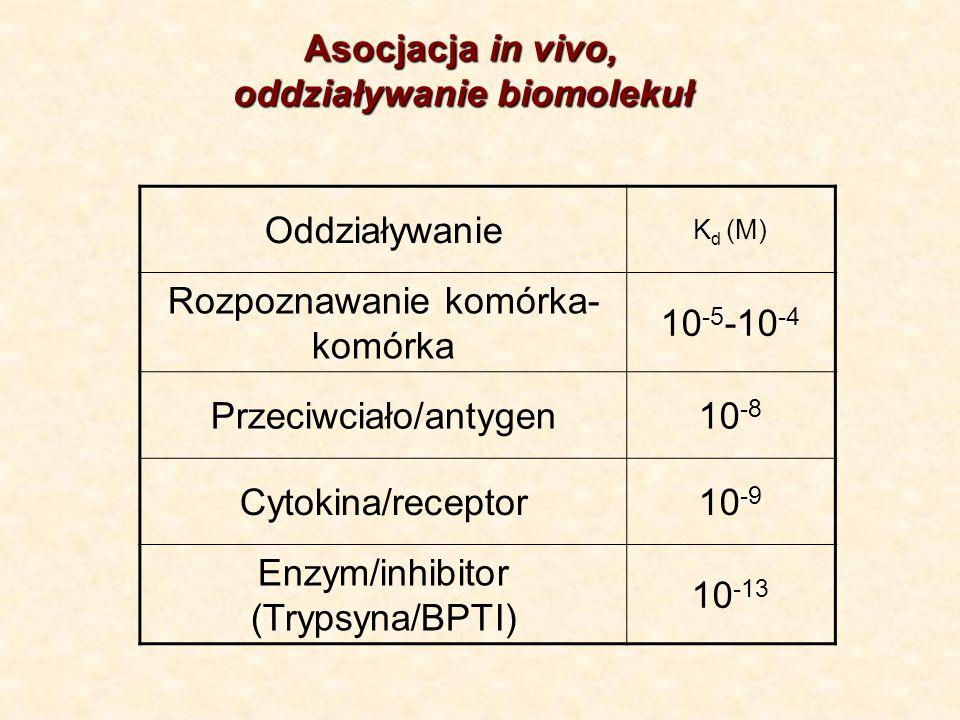 Oddziaływanie K d (M) Rozpoznawanie komórka- komórka 10 -5 -10 -4 Przeciwciało/antygen10 -8 Cytokina/receptor10 -9 Enzym/inhibitor (Trypsyna/BPTI) 10