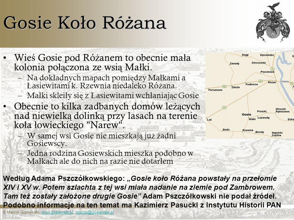 © Marcin Gosiewski, www.gosiewski.pl, marcin@gosiewski.plwww.gosiewski.plmarcin@gosiewski.pl Gosie Koło Różana Wie ś Gosie pod Ró ż anem to obecnie ma