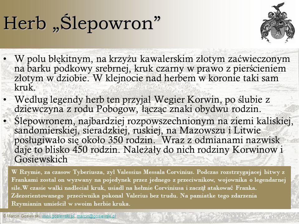 © Marcin Gosiewski, www.gosiewski.pl, marcin@gosiewski.plwww.gosiewski.plmarcin@gosiewski.pl Herb Ślepowron W polu b łę kitnym, na krzy ż u kawalerski