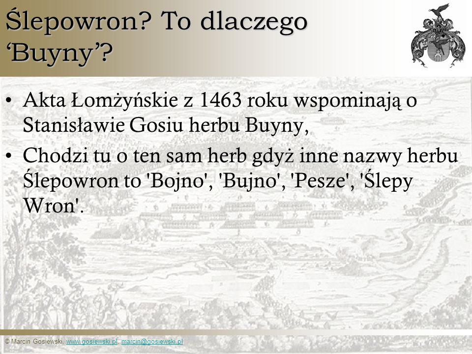© Marcin Gosiewski, www.gosiewski.pl, marcin@gosiewski.plwww.gosiewski.plmarcin@gosiewski.pl Ślepowron? To dlaczego Buyny? Akta Ł om ż y ń skie z 1463