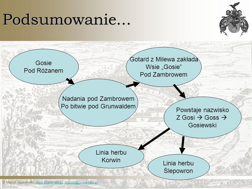 © Marcin Gosiewski, www.gosiewski.pl, marcin@gosiewski.plwww.gosiewski.plmarcin@gosiewski.plPodsumowanie... Gosie Pod Różanem Nadania pod Zambrowem Po