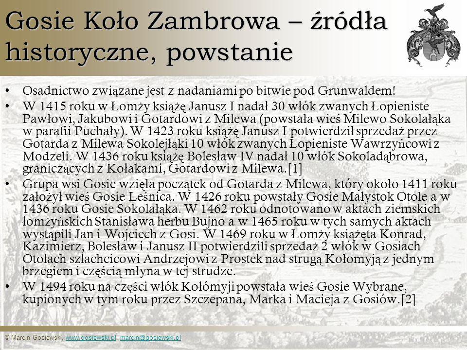 © Marcin Gosiewski, www.gosiewski.pl, marcin@gosiewski.plwww.gosiewski.plmarcin@gosiewski.pl Gosie Koło Zambrowa – źródła historyczne, powstanie Osadn