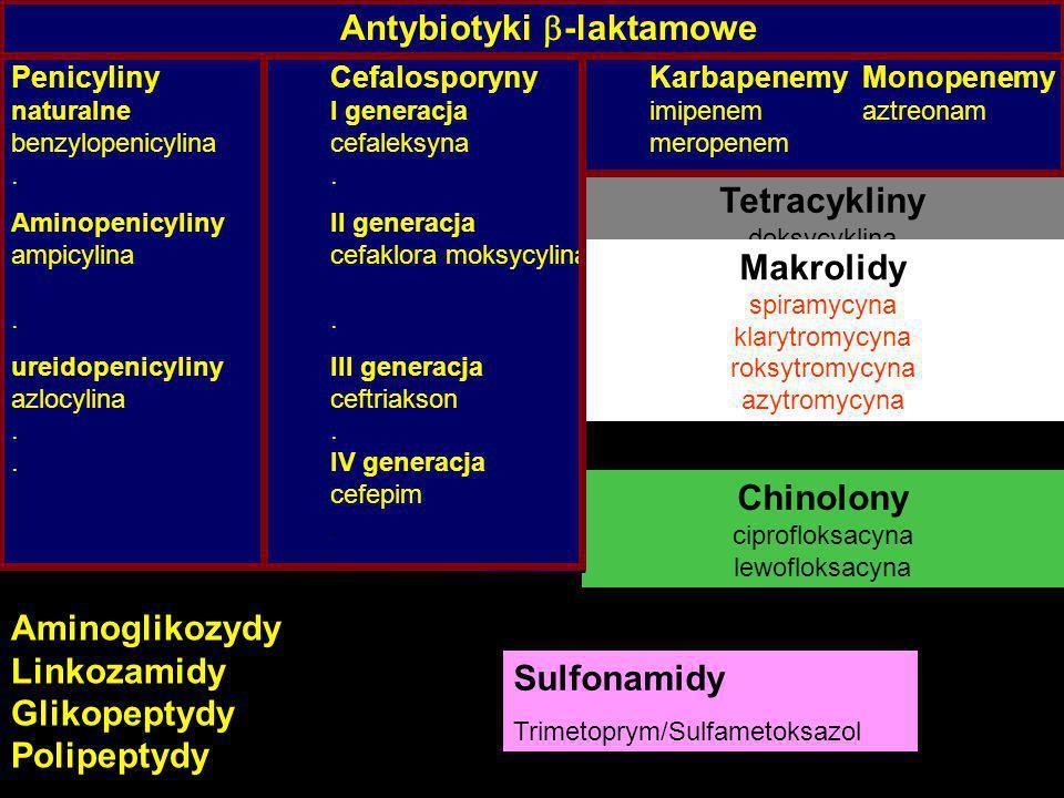 Chinolony ciprofloksacyna lewofloksacyna Tetracykliny doksycyklina Penicyliny CefalosporynyKarbapenemyMonopenemy naturalneI generacjaimipenemaztreonam