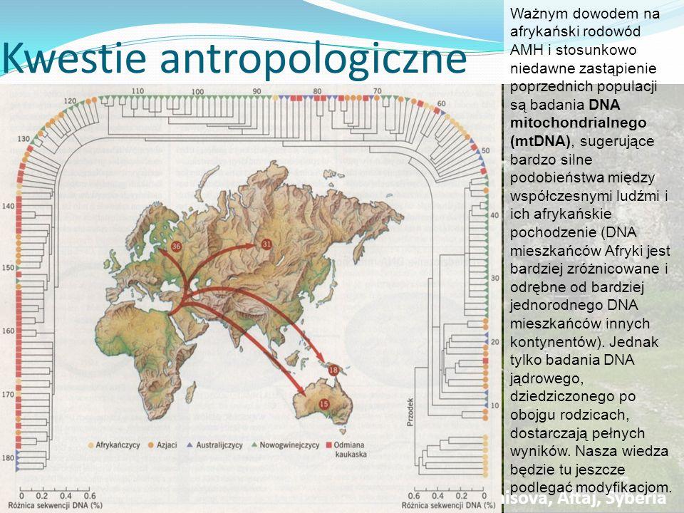 Kwestie antropologiczne W środkowym paleolicie poza Europą występowały także inne populacje o podobnym stopniu rozwoju kulturowego i antropologicznego